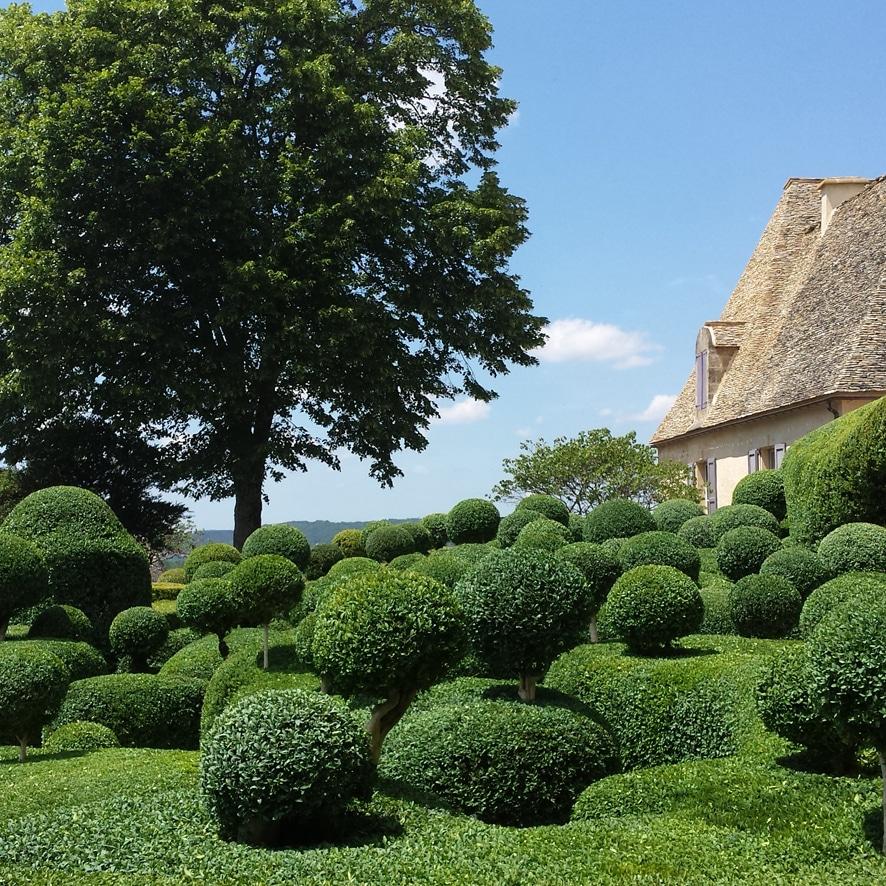 paysagiste jardinier sarlat