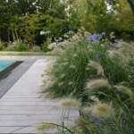amenagement bord de piscine